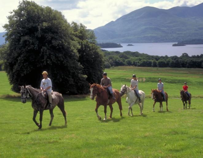 Horse Riding & Pony Trekking