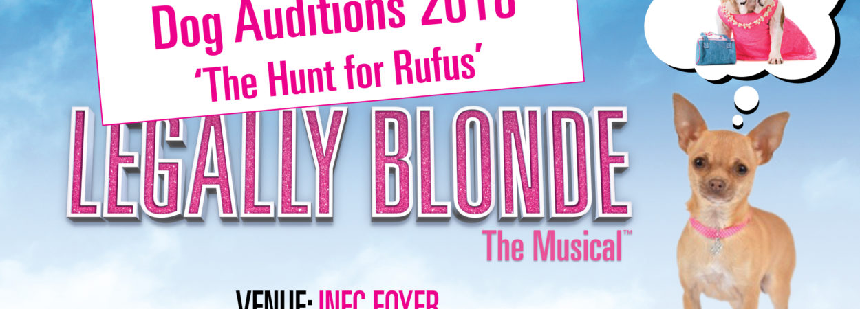 Legally Blonde – The Hunt for Rufus